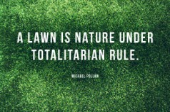 A Lawn is Nature Under Totalitarian Rule